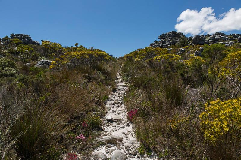 tranquility-cracks-hike-14