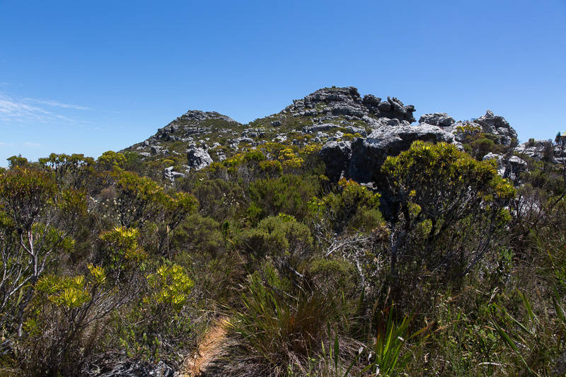 tranquility-cracks-hike-15