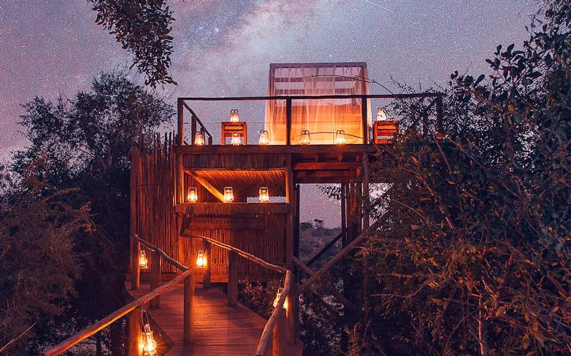 Sleep under the Stars in the Tinyeleti Treehouse at Lion Sands