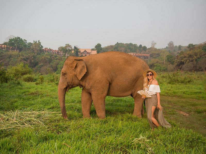 anantara golden triangle elephant sanctuary