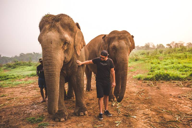 Walk with Giants at the Anantara Golden Triangle Elephant Sanctuary